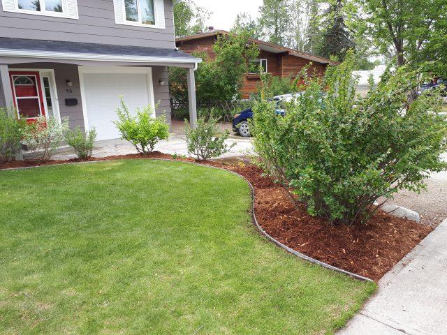 Crisp New Edging For Yard